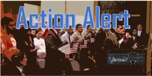 ACTION ALERT: HB1316 Driver's licenses